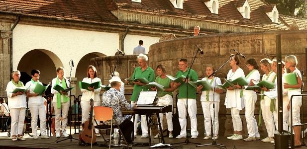 Chorgemeinschaft HinGehört Jugendstilfestival 2019 © Fotostudio Birgit von Ritter Zahony